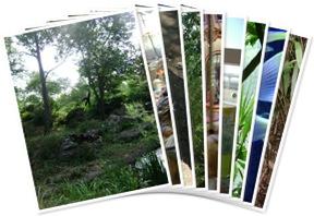 View Nasville Zoo