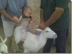 Goat riding