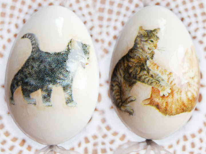 cats easters