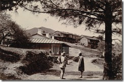 Theog Bazar 1890