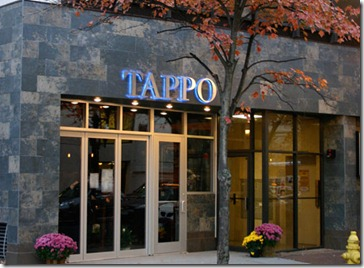 20101115tappoext