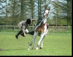 falling-rider
