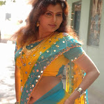 Check out the huge cleavage show via transparent saree   part 2