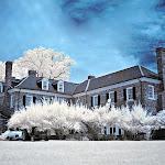 infraredphotography24.jpg