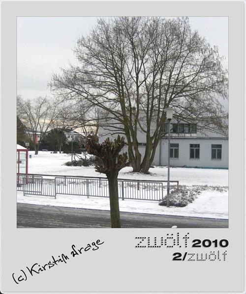 02-zwoelf2010-2