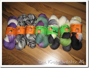 Schaf am Deich (5)