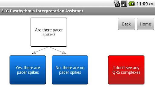 ECG Interpretation Assistant