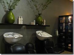 Alma Salon (3)