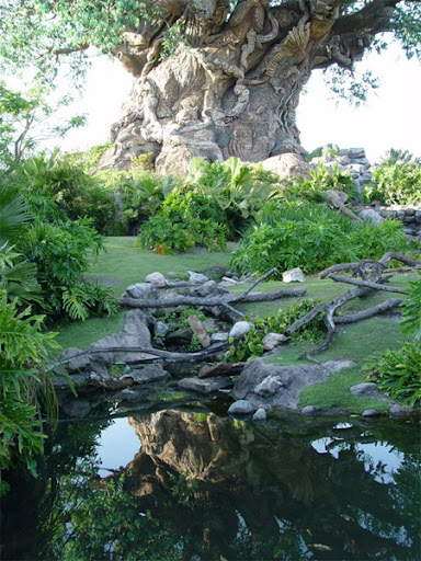 The Tree of Life at Disneys Animal Kingdom 18