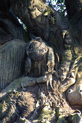 The Tree of Life at Disneys Animal Kingdom 7