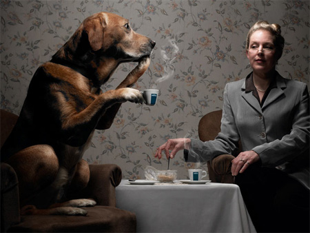 Creative Photography by Romain Laurent 18