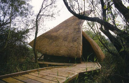 natural architecture 09