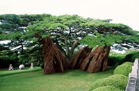 natural architecture 10