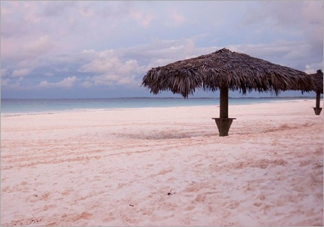 Pink sand, Harbour Island, Bahamas