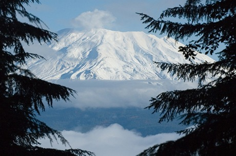 Mount-Mitchell