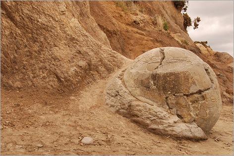 Mysterious Moeraki Boulders 05