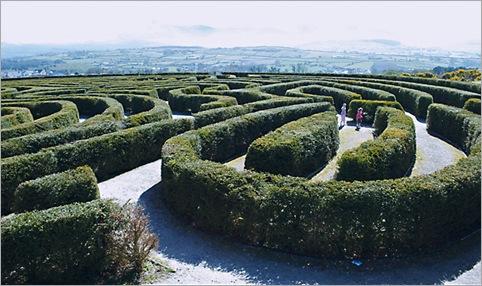 Peace Maze, Castlewellan, Ireland