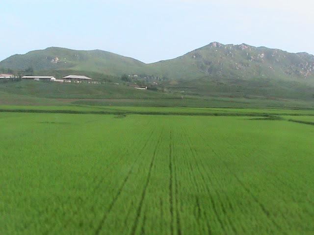 Fotos de las Crónicas de Un Viaje a Corea IMG_0305