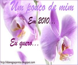 ano2010
