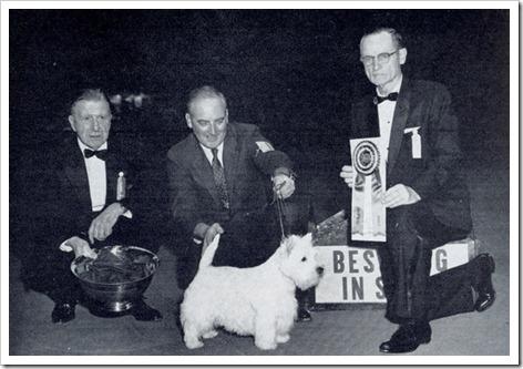 elfinbrook1962