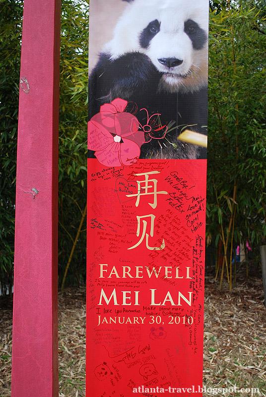 Панда Май Лан panda Mei Lan