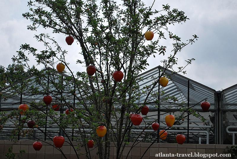 Скульптуры из стекла Glass Blown Organics.