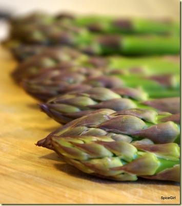 asparagus 3 5-20-09