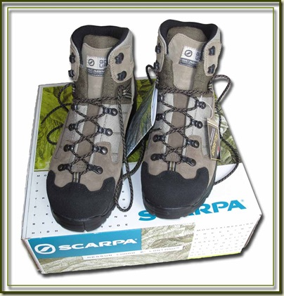 Scarpa Infinity GTX Boots