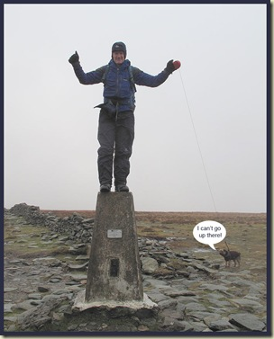 On the trig point