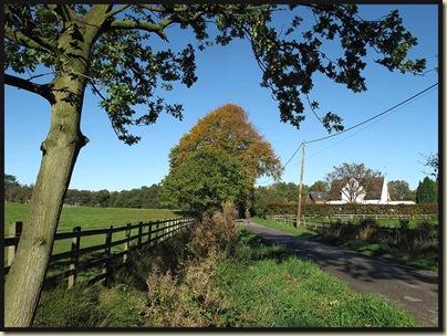 Rotherwood Road