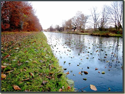 The Bridgewater Canal, Timperley, 25/11/10