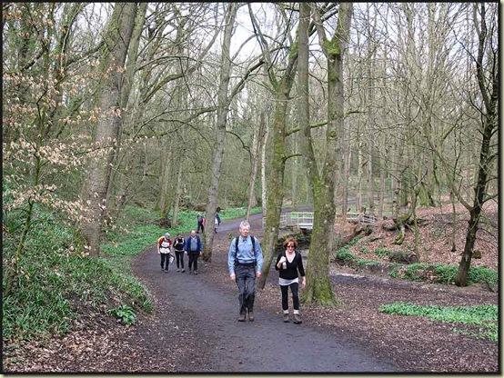 Strolling through the delightful Borsdane Wood