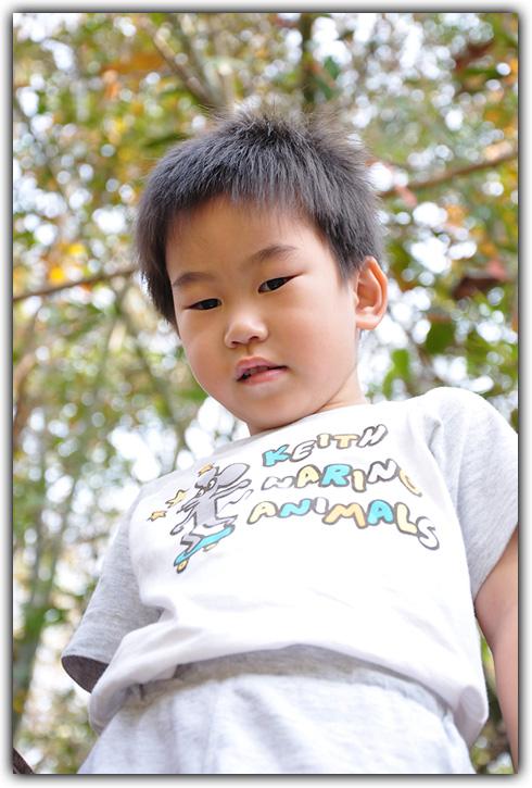 ฮมพุเตย ทู