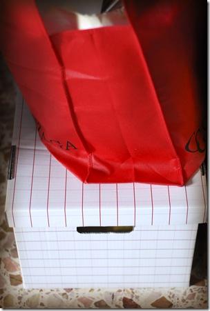 borsa rossa 2