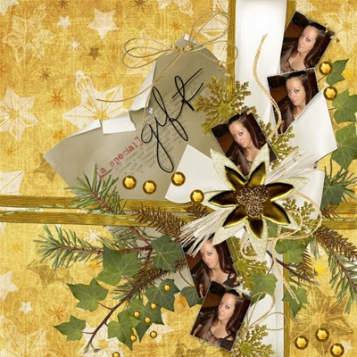 A-Special-Gift-Karissa2008-Layout2AGT