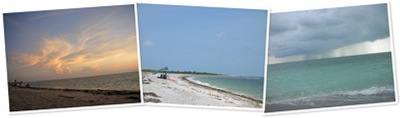View The beach at Cayo Costa State Park