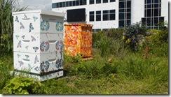 fairmont hotels art hives