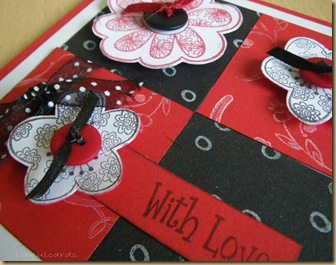 Ribbon and Red Closeup