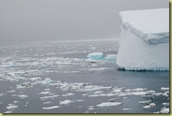 Iceberg with pack ice