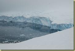 Glacier which calves