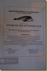 Plunge Certificate