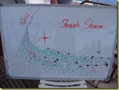 Dive 2 Shaab Sharm