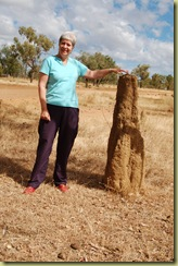 Termite Mound and Pat