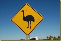 Beware Emus