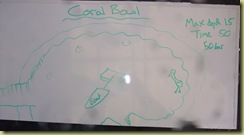 Coral Bowl Dive Plan