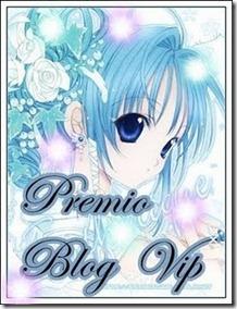 PremioBlogVip