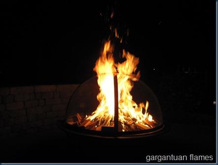 fire pit (1)
