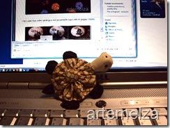 artemelza - tartaruga de fuxico