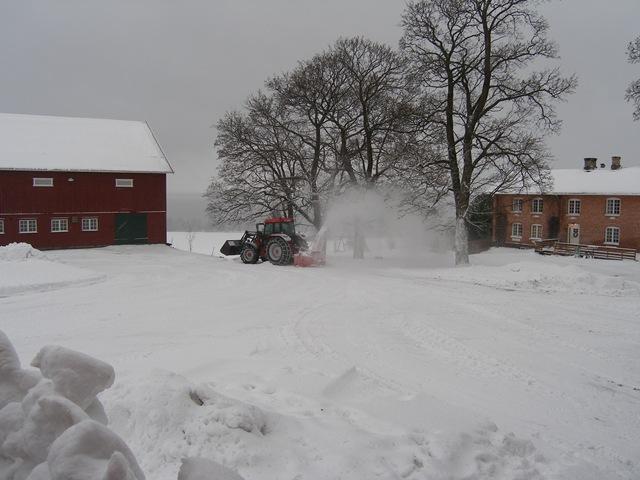 Jan2009 319