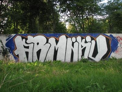 ARMNAU200X